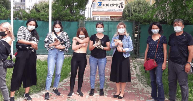 Yaşar Üniversitesi Öğrencileri Kedi Köyünü Ziyaret Etti